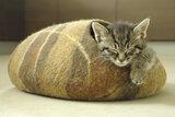 Vilten kattenmand Bruin