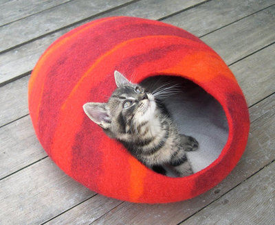 Vilten kattenmand Rood